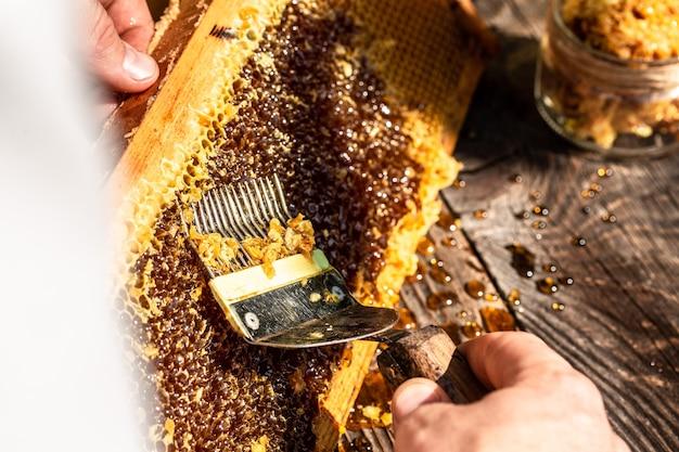 Инструмент пчеловода для работы с пчелами