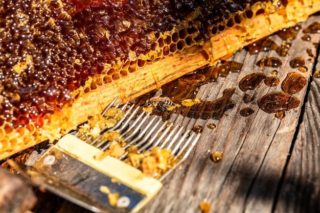꿀벌과 함께 일하는 양봉가의 도구