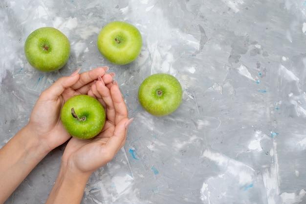 Вид сверху свежие зеленые яблоки, мягкие и сочные, удерживаемые самкой на светлом столе, фруктовый свежий цвет, витамин