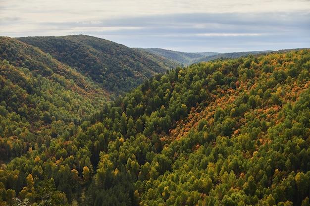 Вид сверху на красочные лесные деревья и озеро в осенний сезон.