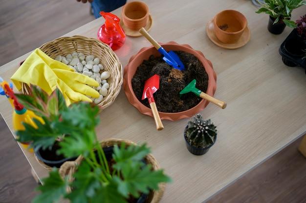 Вид сверху садовых инструментов на деревянном полу, концепция хобби и отдыха