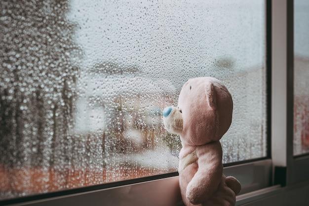 장난감 분홍색 슬픈 곰이 창 밖을 내다보고 가을 비오는 날을 놓치고 있습니다 w 위의 빗방울