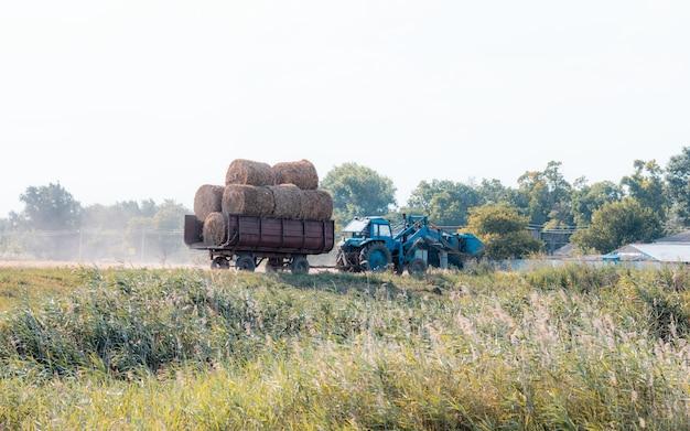 Трактор в деревне везет сено. деревенская сцена. старый трактор в сельском хозяйстве.