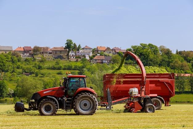 Трактор с кормоуборочными комбайнами убирает с поля скошенную траву для засыпки силоса в прицеп трактора в солнечный день.