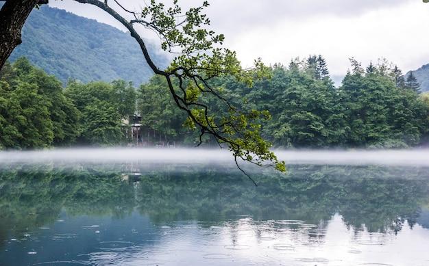 ロシアのカバルディノ・バルカル共和国の雨滴が水面に浮かぶ曇りの霧の天気で、低いカルストの青い湖セリック・ケルに木の枝がかかっています