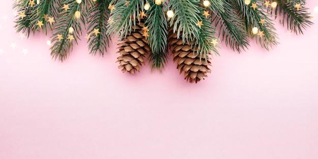 Ветка дерева с шишками на розовом фоне