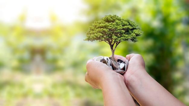 사람들의 손에 있는 동전에서 자라는 나무