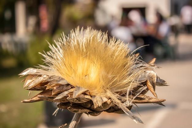 イタリア北部の平原の典型的な花が前景に戻り、背景がぼやけています。