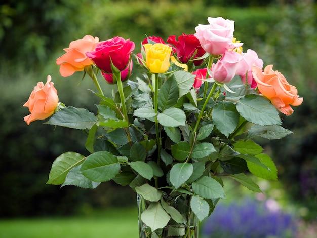 庭に出ているカラフルなバラの花瓶