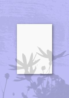 Вертикальный лист белой фактурной бумаги формата а4 на сиреневой стене