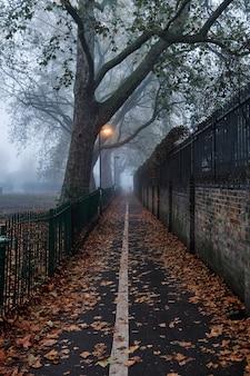 Вертикальный снимок осенней дорожки в парке, покрытой засохшими листьями и туманом.