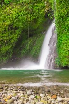 Вид на водопад в замедленной съемке с зелеными стенами в тропическом лесу в индонезии