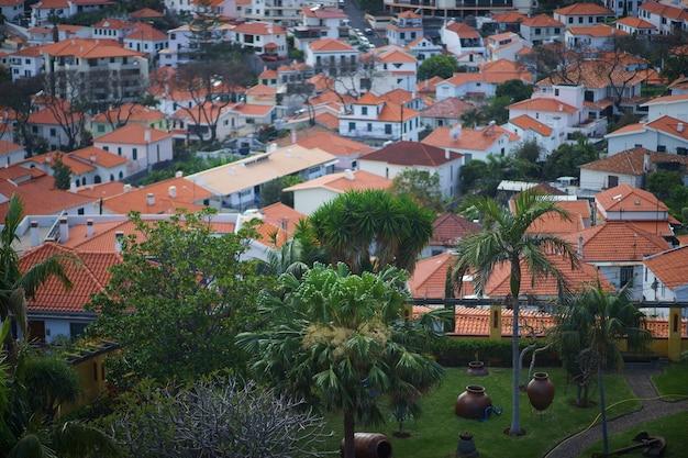 마데이라 푼샬의 옥상을 의자에서 바라 보면 도시 뒤의 언덕 위로 올라갑니다.