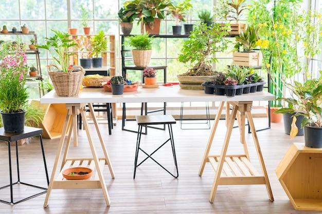 モダンな家の屋内庭園、ホームガーデニング、趣味の概念のビュー。