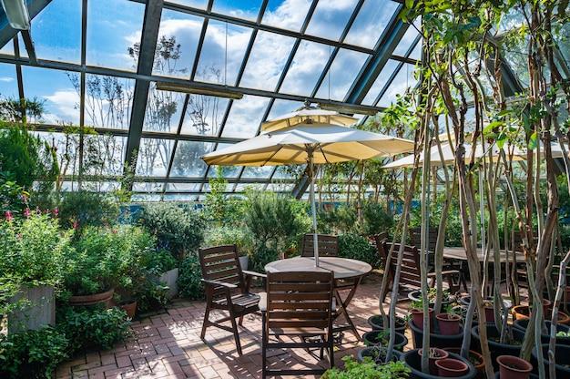 明るい日差しと椅子のある温室の眺め。