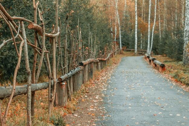 Вид на дорогу по красивому забору из веток с опавшими листьями на фоне осеннего леса. дорога в парке осенью