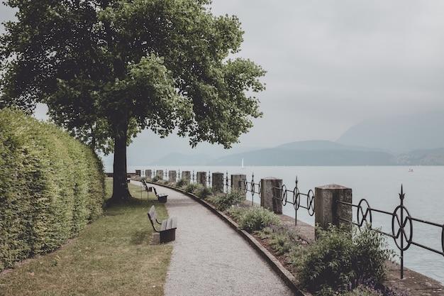 花、緑の木々、トゥーン湖周辺の公園を散歩します。夏の風景の背景