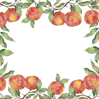 흰색 배경에 잎 가지가 있는 잘 익은 복숭아 과일이 있는 수채화 프레임