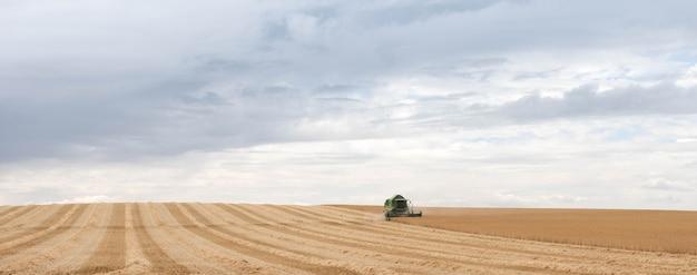 Уборочная техника пшеницы за работой в поле. комбайн уборочная техника сельхозтехника комбайн для золотистой спелой пшеницы. сельское хозяйство