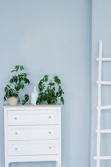 白いチェストとその上の鉢植え、水色の壁に白い脚立。リビングルームのインテリア