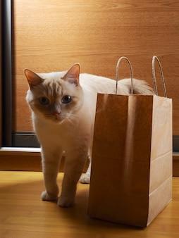 Белый рыжий кот исследует ремесленный набор в домашней обстановке