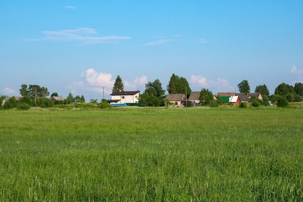 夏の日に緑の芝生の広いオープンフィールド