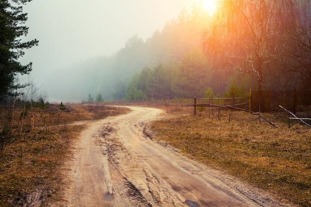 霧の早朝の森に沿った曲がりくねった未舗装の道路