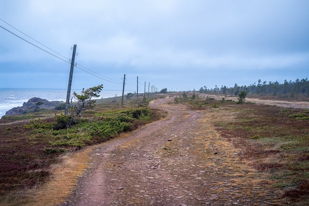 白海沿岸に沿って古い電柱がある曲がりくねった未舗装の道路。コラ半島、ウンバ。