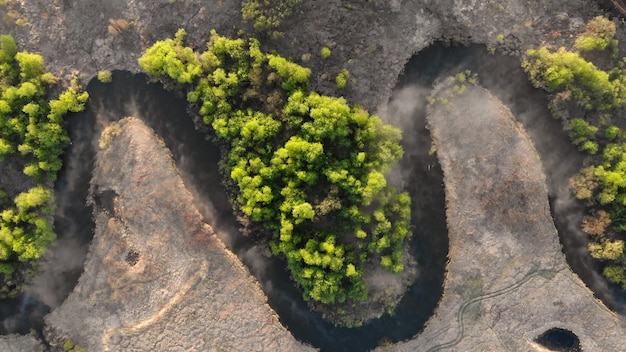 울창한 숲 한가운데에 구불구불한 강. 조감도에서 숲 강입니다. 예비의 상위 뷰입니다. 카메라는 천천히 내려간다