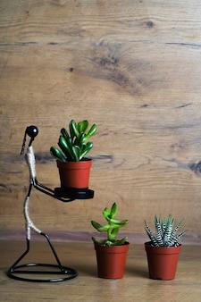 多肉植物の植木鉢コレクションに小さな植物を持っている人間のワイヤーフィギュア