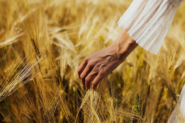 女性の手が小麦に触れる