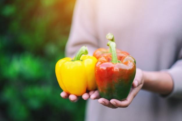 Женщина держит в руках свежий болгарский перец