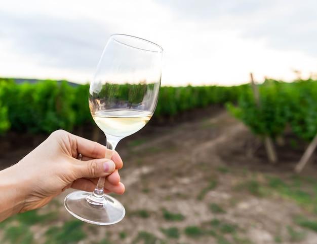 Женщина, держащая бокал белого вина