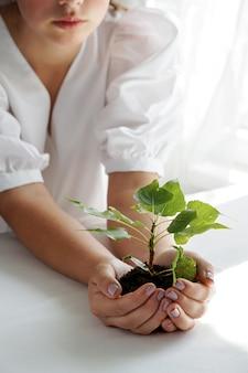 Женщина, держащая зеленое растение в ладони. закройте вверх по руке держа молодой свежий росток. малая глубина резкости с упором на рассаду.