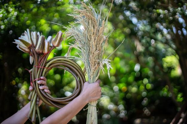 패 디의 귀를 잡고 여자는 잎에서 bokeh 배경이있다.