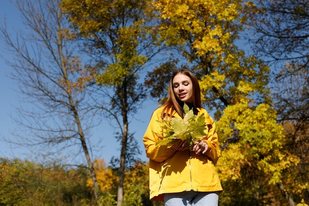 秋の背景に黄色の葉を持つ明るい日に秋の服を着た女性。テキスト用の空き容量