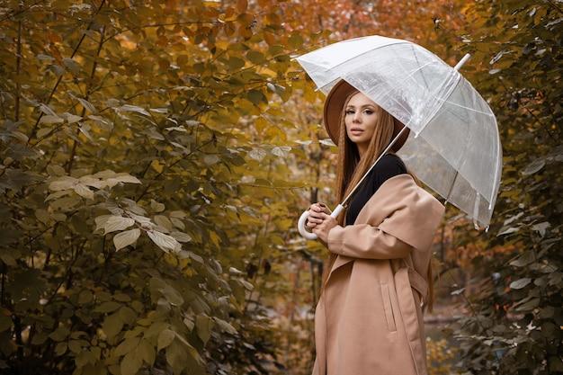 秋の背景に透明な傘を持つ秋の服を着た女性。テキスト用の空き領域。ブロガー