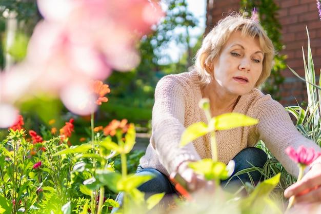 Женщина в саду заботится о цветах и растениях в солнечный день.