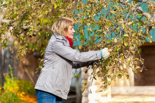 秋の庭の女性がゴミを収穫して取り除く