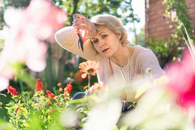庭の女性が苗に花を選びます。中年女性は剪定ばさみを持っています。彼女は村で働いています。