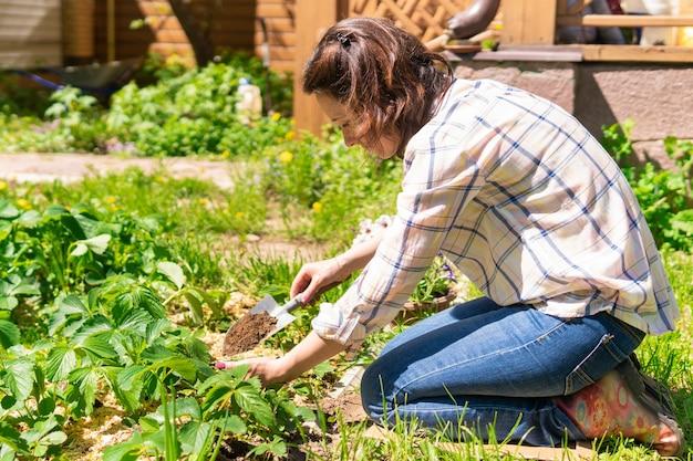 여자는 그녀가 묘목을 심는 그녀의 뒤뜰에서 정원을 가꾸고 있다