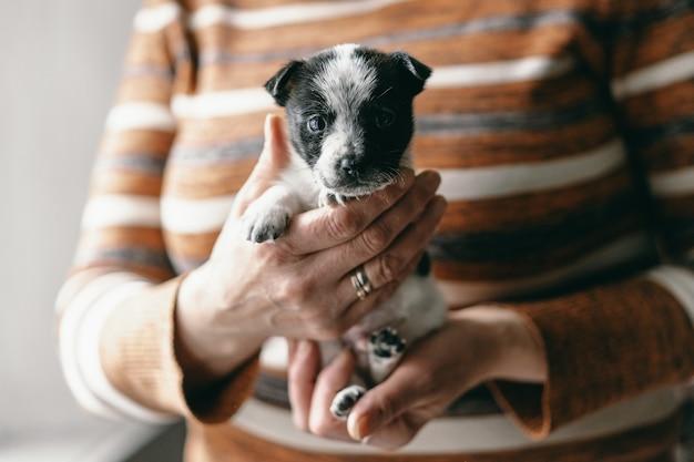 女性が子犬を腕に抱いて笑っている