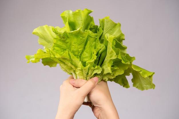Женщина держит в руках прекрасные и здоровые овощи (пекинская капуста, бок-чой), концепция прямой доставки с фермы.