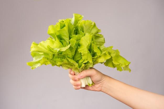 農場から直送するというコンセプトで、可愛くて健康的な野菜(白菜、チンゲン菜)を手にした女性。