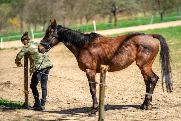 Женщина ведет лошадь из загона через электрический забор