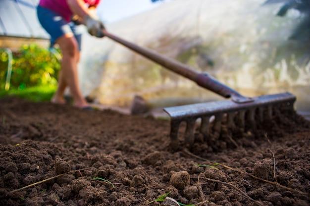 여름 화창한 날 정원에 있는 정원에서 한 여자가 갈퀴로 땅을 평평하게 한다