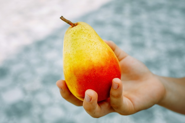 女性の手は、採れたての黄色い熟した梨を持っています。