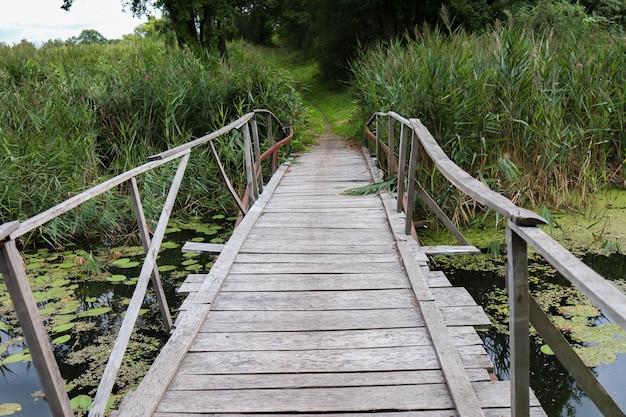 湖の緑の睡蓮と葦にある木造の橋がその周りに生えています