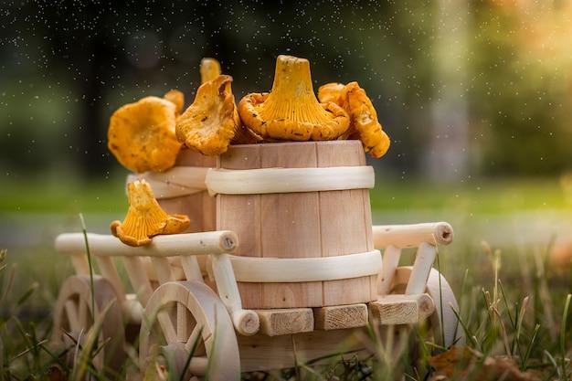 Деревянная тележка со свежими грибами крупным планом