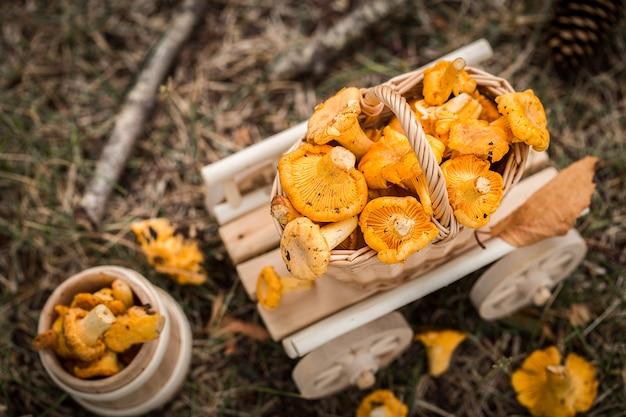 Деревянная тележка со свежими грибами. вегетарианская еда.